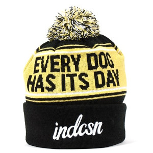Indcsn Every Dog Has Its Day Yellow