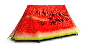 Field Candy Tents - Watermelon